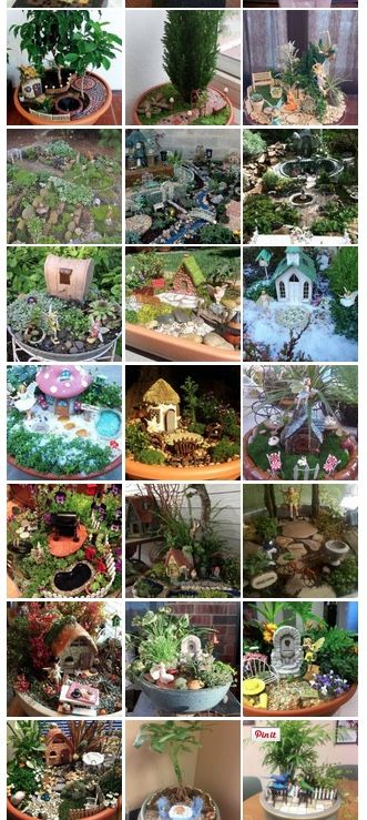 Over 100 miniature and fairy gardens from all over the world!