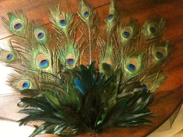 helpful peacock diy costume tips (for chloe)
