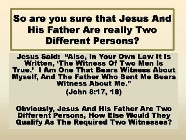 how the world views religion as opposed to the true teachings of the bible The false religion of islam  when you carefully study the bible and compare it with the teachings of the koran,  the true religion with god is islam.