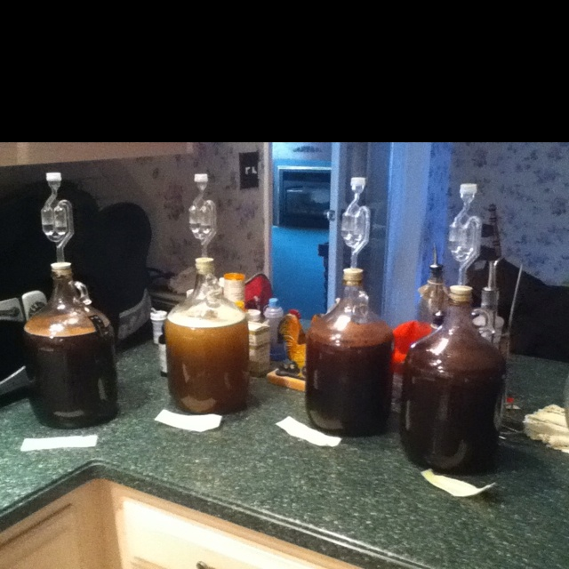 Best 25 brew your own beer ideas only on pinterest beer for How to brew your own craft beer