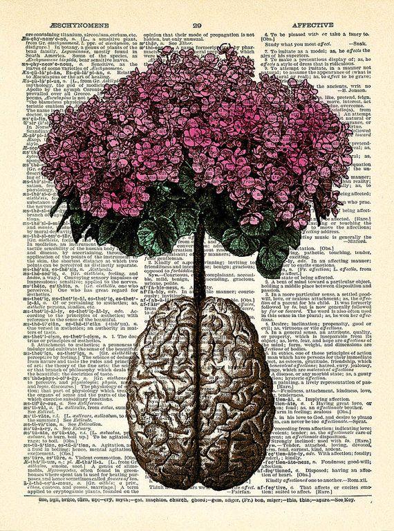 Brain Human Anatomy Flowers Dictionary Art Print by PrintsVariete