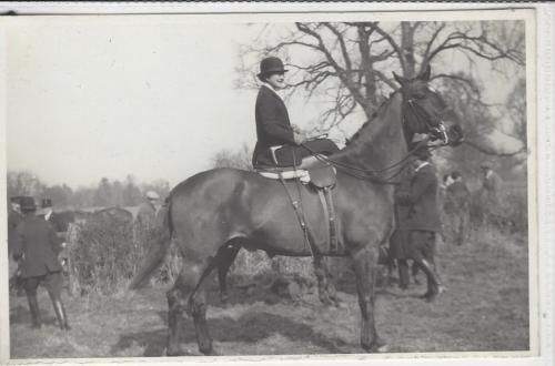 Horse-Postcard-COURT-REAL-PHOTO-M-E-Bramwell-Side-saddle-Blackmore-Vale-Hunt