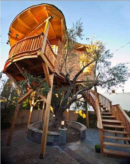 Best Tree House Images On Pinterest Treehouses Trees And