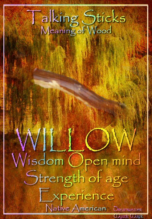 WILLOW :Wisdom~ Open mind~ Strength of age: Experience (Mine is Diamond Willow, a gift from an Alaskan woman.)