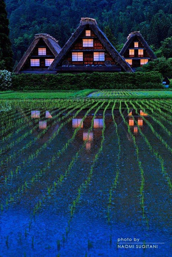 Gifu,Japan