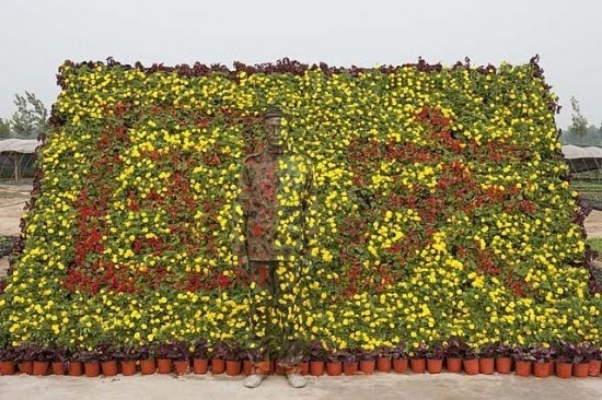 The Invisible Man: Liu Bolin covers himself with paint to blend into his backgrounds.