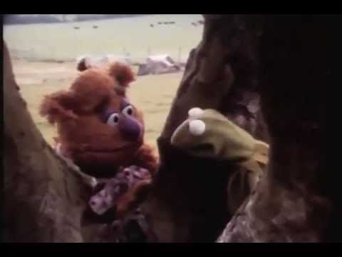 Kermit the Frog & Fozzie Bear Hilariously Engage In Improvised Existential Banter During 1979 Camera Test