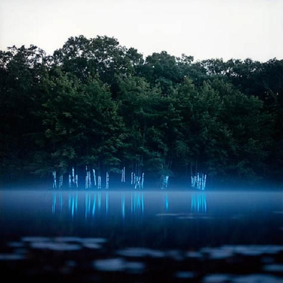 Light installations within traditional landscapes By Barry Underwood