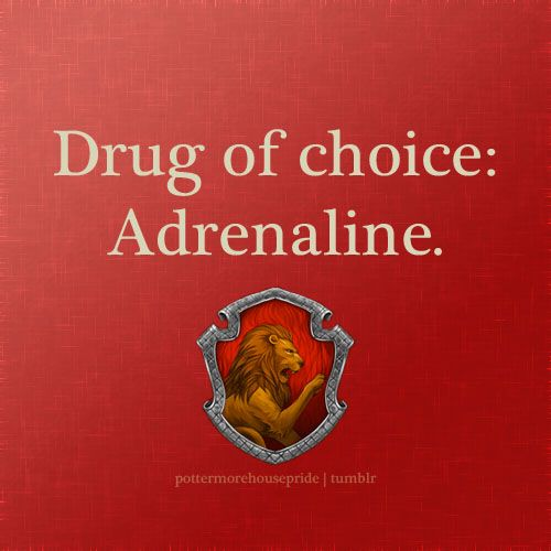 pottermorehousepride: Gryffindor Pride HUFFLEPUFF PRIDE! Drug of choice: Food.