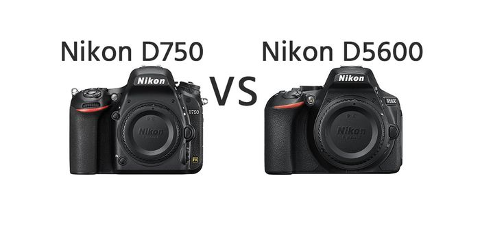 Nikon D750 vs Nikon D5600 Comparison   https://dslrcamerasearch.com/nikon-d750-vs-nikon-d5600-comparison/ The Nikon D750 dslr camera is the latest full frame offer from the Nikon brand and was introduced in between the D610 and the D810 in terms of the bra...  https://dslrcamerasearch.com/nikon-d750-vs-nikon-d5600-comparison/