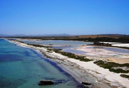 Gli Habitat naturali: Capo Falcone, Stagno di Casaraccio Pilo e Saline