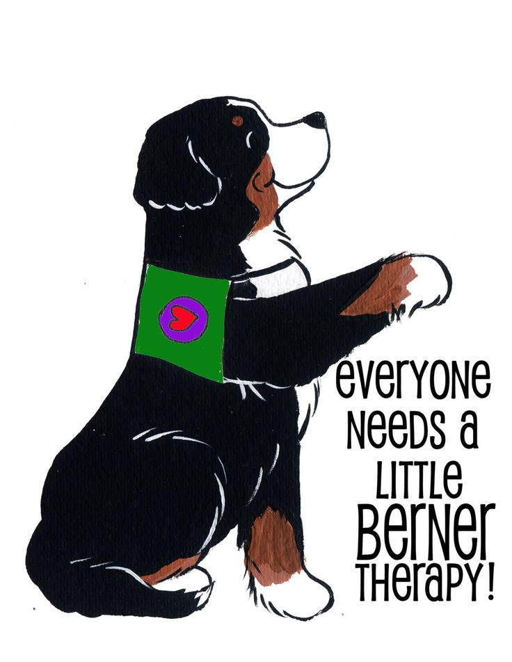 A personal favorite from my Etsy shop https://www.etsy.com/listing/230339301/bernese-mountain-dog-therapy-shirt-you