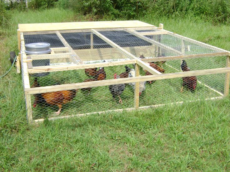 25 best chickens images on pinterest chicken coop run for Movable chicken coop plans