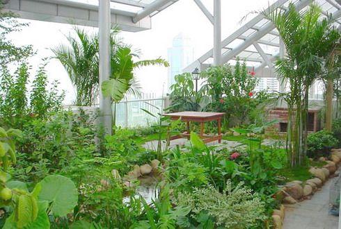roof garden fertilizer