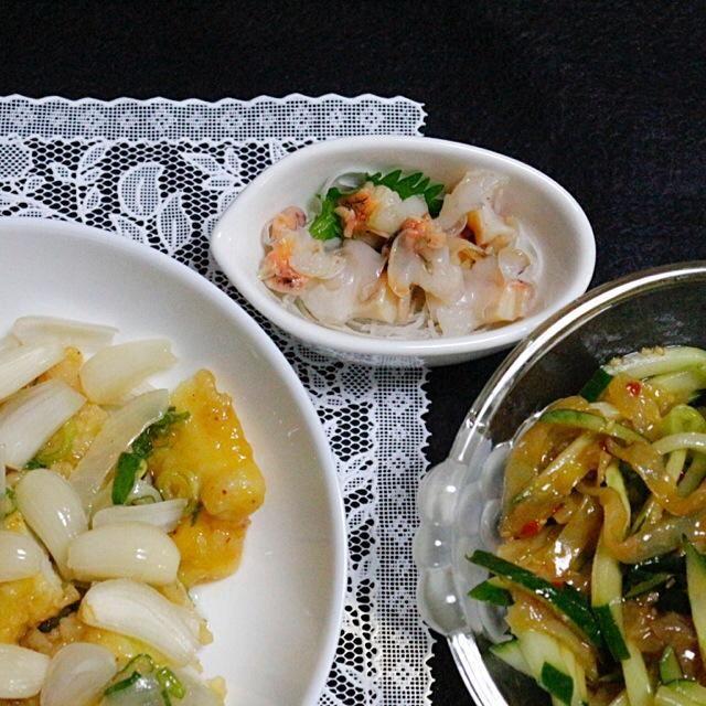 自家製のらっきょが若く、酸っぱかったがイカと一緒に食べると美味しかった。 - 85件のもぐもぐ - イカの甘酢餡らっきょのせ  クラゲの和え物  つぶ貝 by Hiroshi  Kimura