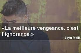Résultats de recherche d'images pour «citation de zayn malik en français»