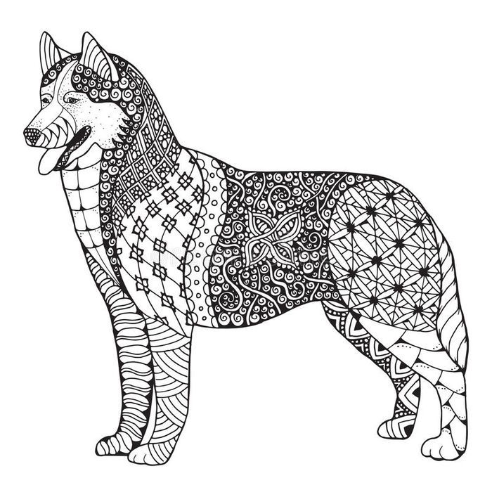Husky Coloring Pages Di 2020