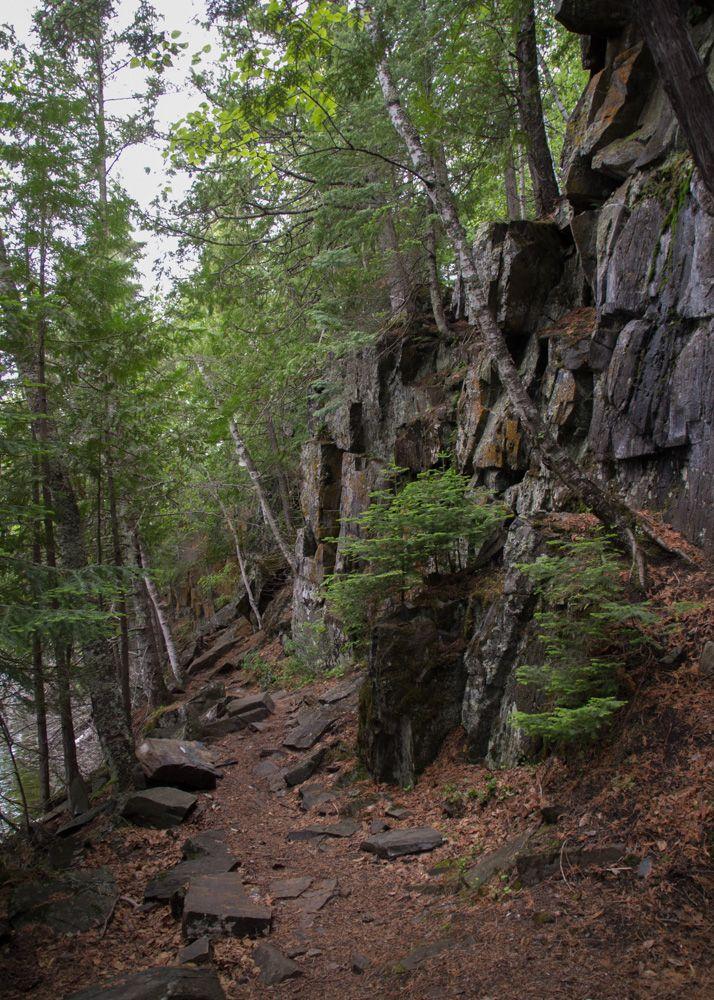 Hunt_Lake_Trail-Trail_beside_Lake-2013-06-17_P6172851.jpg 714×1,000 pixels