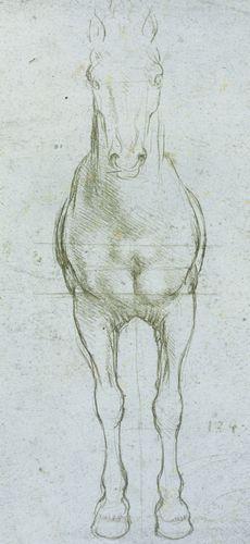 Studio sulle proporzioni di un cavallo - Leonardo - Opere d'Arte su Tela - Listino prodotti - Digitalpix - Canvas - Art - Artist - Painting