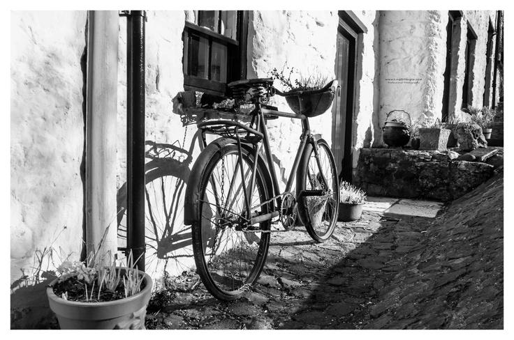 bike main street
