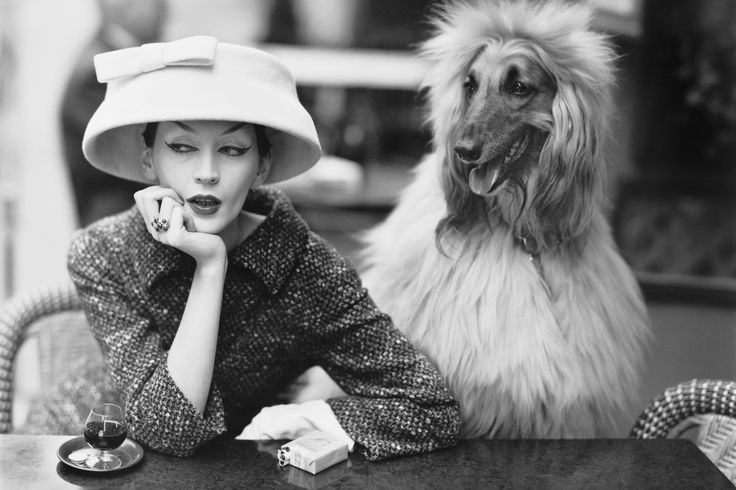 Dovima with Sacha, cloche and suit by Balenciaga, Café des Deux Magots, Paris, 1955 - Photo Richard Avedon © The Richard Avedon Foundation