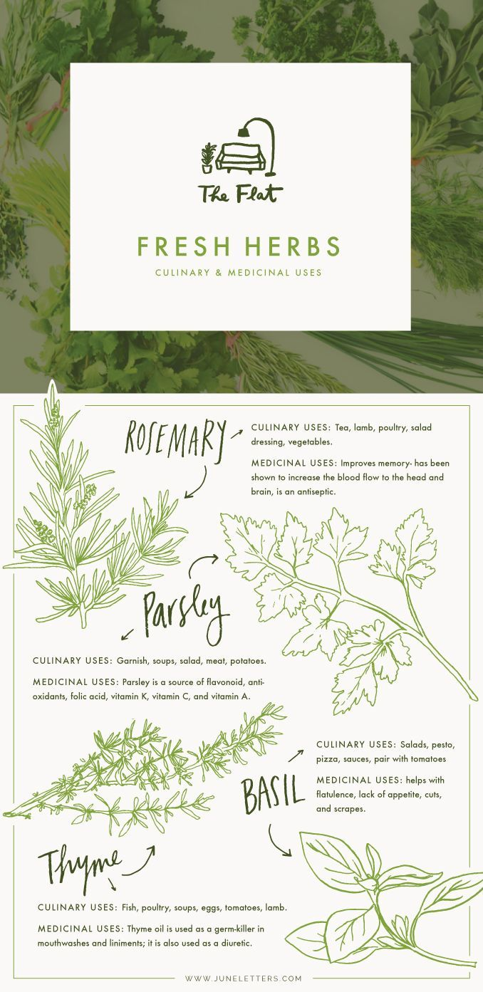Such a beautiful graphic. The Flat - Fresh Herbs for culinary & medicinal uses