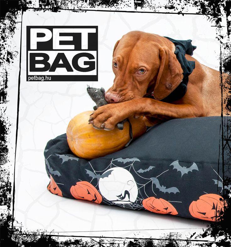 Halloween PetBag kutyafekhely / dog bed / http://petbag.hu/