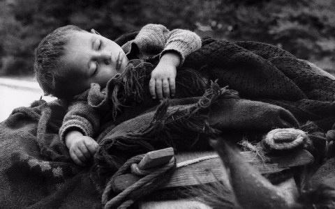 Φωτογραφία με τίτλο Στο δρόμο για τα χειμαδιά, Πίνδος (1959) . Ο Κώστας Μπαλάφας κατέγραψε με το φακό του τη μεταπολεμική Ελλάδα καθώς και παραδοσιακά ήθη και έθιμα κυρίως της Ηπείρου. (Kostas Balafas)