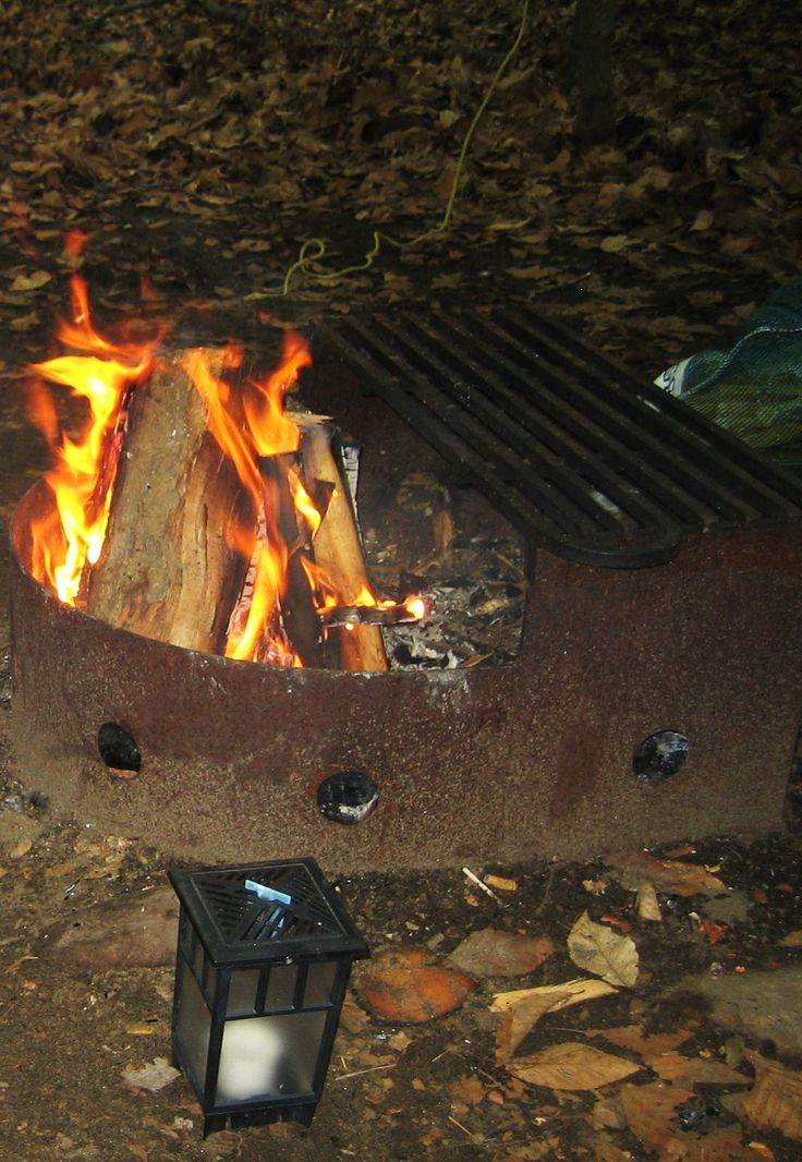 Gluten Free Camping – or cottaging! Nice food lists