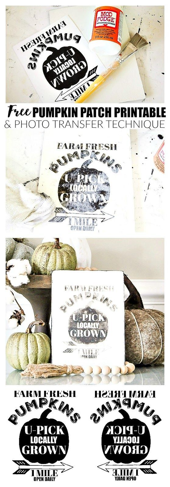 FREE PUMPKIN PATCH PRINTABLE!!!! How to transfer an image to wood with a free pumpkin printable