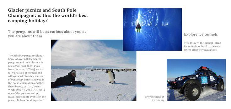 南極専門の豪華旅行事業者 「ホワイト・デザート」は、南極大陸初で、かつ唯一の豪華リゾートだ。ウッドヘッドは10年前、南極を目指す4カ月間のスキー遠征のすぐあとにこのビジネスを開始した。彼はその過酷な風景の美しさに息を呑み、ほかの人たち(数カ月間にわたって風雨に果敢に立ち向かうことはごめんだと考える人たち)でも同じように感じるのではないかと思った。  White Desertのキャンプは、過酷でも手強くもない。実際のところ、上流階級レヴェルの贅沢さだ。「サウジアラビアの王女たちも来ました。それまで雪というものを見たことがない方たちでした」とウッドヘッドは言う。  このキャンプは、高級なサファリ(狩猟旅行)を手本にしているという。だがそこにあるのは、広大な草原、ライオン、豪華なバンガローではなく、氷で覆われた平原、皇帝ペンギン、そして宿泊のためのシェルターだ。