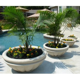 pool side planters - Large Ceramic Planters
