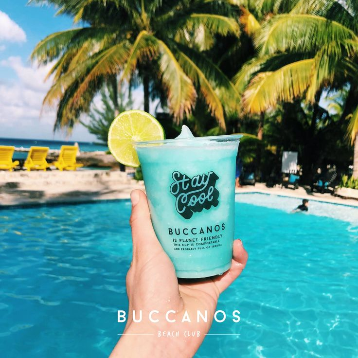 Did you know that an estimated 71% of seabirds and 30% of turtles have been found with plastics in their stomachs? If we don't act now, by the year 2050 there will be more plastic in the ocean than fish. We've made the change to compostable cups at Buccanos and are proud to be doing our part!