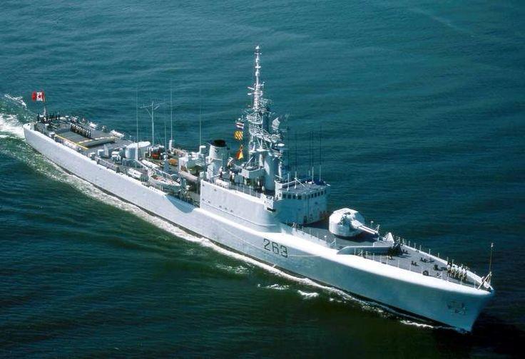 Sunken navy ship HCMS Yukon gives safe haven to marine life