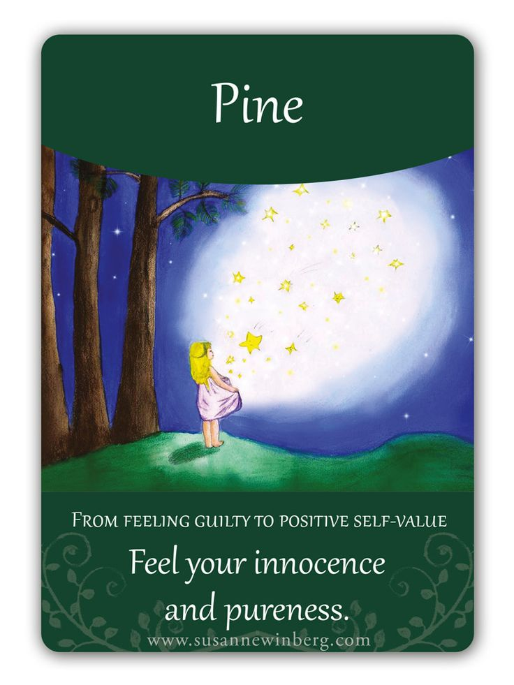 Pine - Bach Flower Oracle Card by Susanne Winberg. Message: Feel your innocence and pureness.