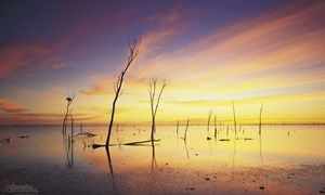 Images of Australia: Lake Gregory, Tanami Desert