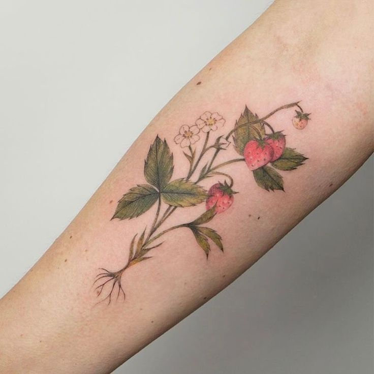 best 25 strawberry tattoo ideas on pinterest bloom tattoo sparkle tattoo and traditional tattoos. Black Bedroom Furniture Sets. Home Design Ideas