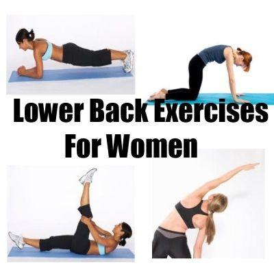 lower back exercises for women  fitness  pinterest