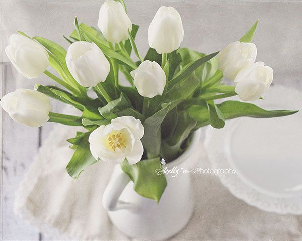 Winter Tulips- Tulip Flower Photograph, White Flower Photo, White Home Decor, White Tulips, Still life Photo, Cottage Decor, Fine Art Print by kellynphotography on Etsy