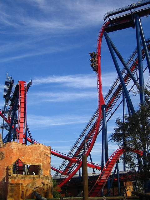 Best 25 busch gardens tampa ideas on pinterest busch - Roller coasters at busch gardens ...