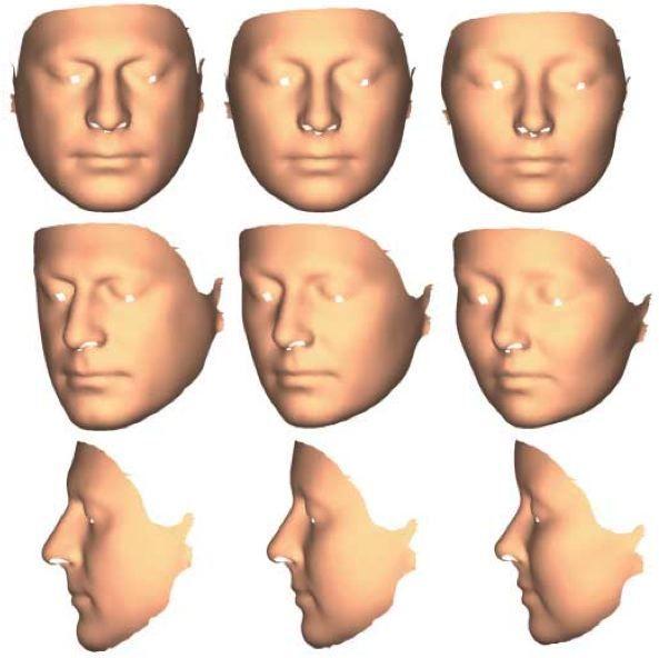 Masculine vs. feminine face variation assessed via 3D laser scanning and geometric morphometrics
