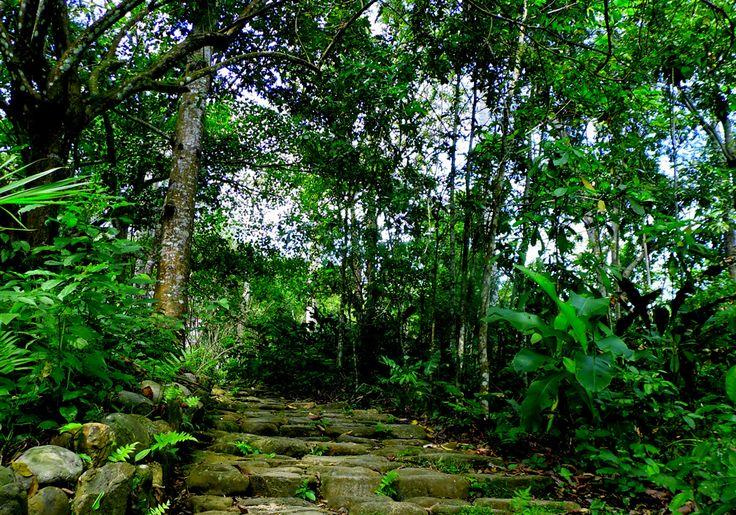 Camino ancestrales de los Tayronas #SantaMarta