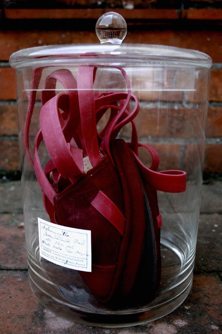 Anatomy shoe in the Jar - Jintae Eom