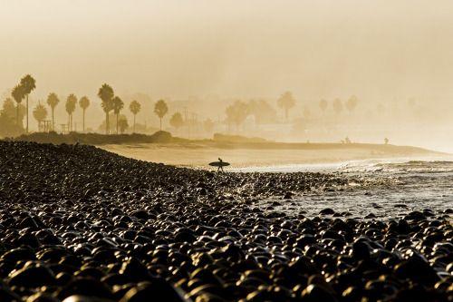 wslofficial: California Golden HourPhoto | @wslofficial