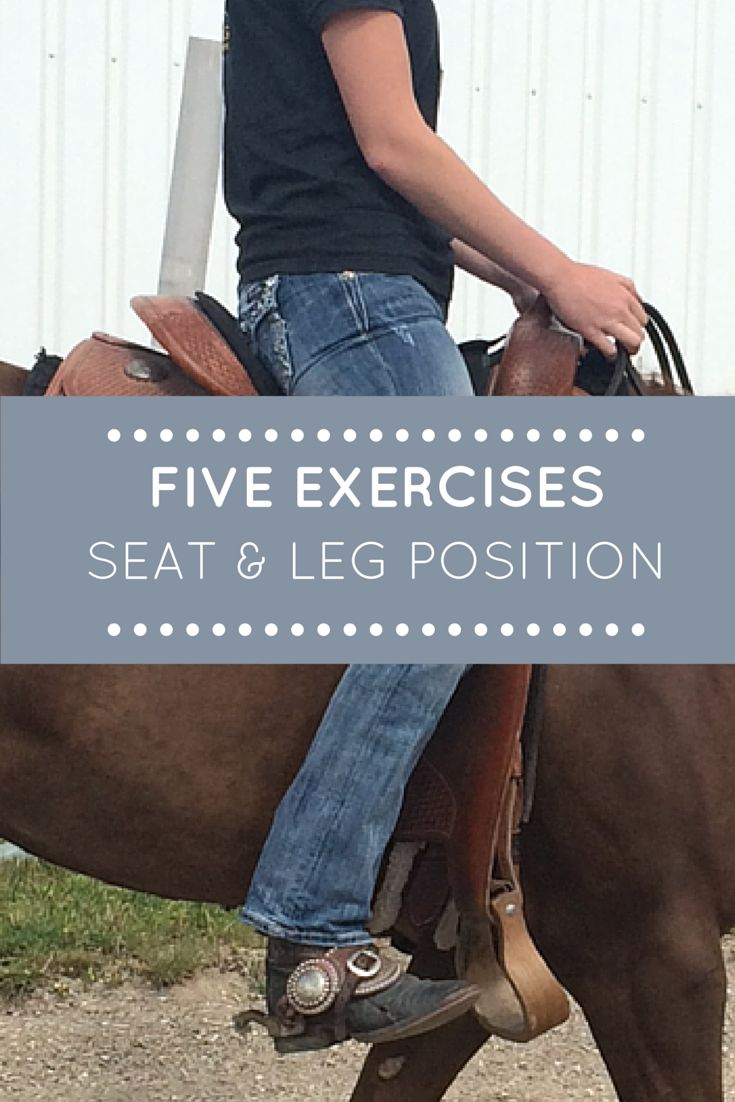Five Exercises to Improve Your Riding Seat and Leg Position