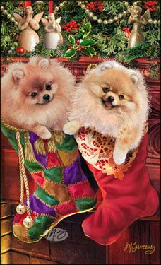 "Pomeranian Christmas Holiday Cards are 8 1/2"" x 5 1/2"" and come in packages of 12 cards. One design per package. All designs include envelopes, your personal message, and choice of greeting. Select the greeting of your choice from the drop-down menu above. Add your personal message to the Comments box during checkout."