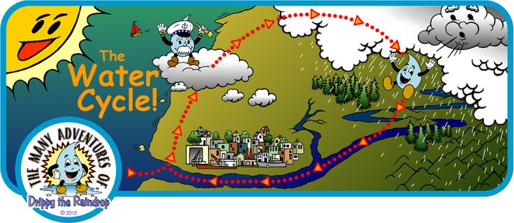 Drippy The Raindrop    Lessons On The Water Cycle