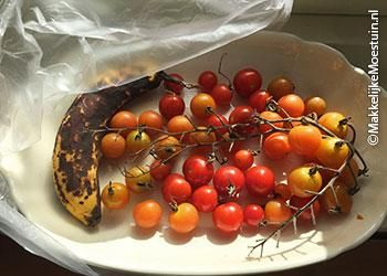 Tomatenziekte in de MM:  grijp snel in! | Makkelijke Moestuin