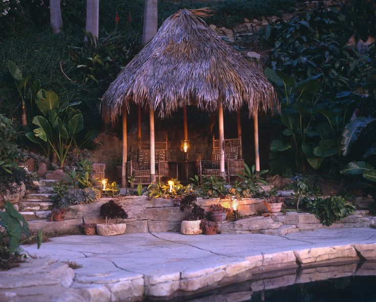 98 best decorating with potted plants images on pinterest ... - Tropical Patio Ideas
