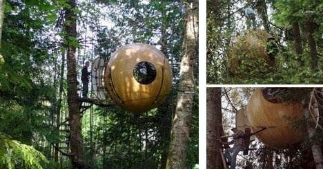 casa futuristica nel bosco - Cerca con Google